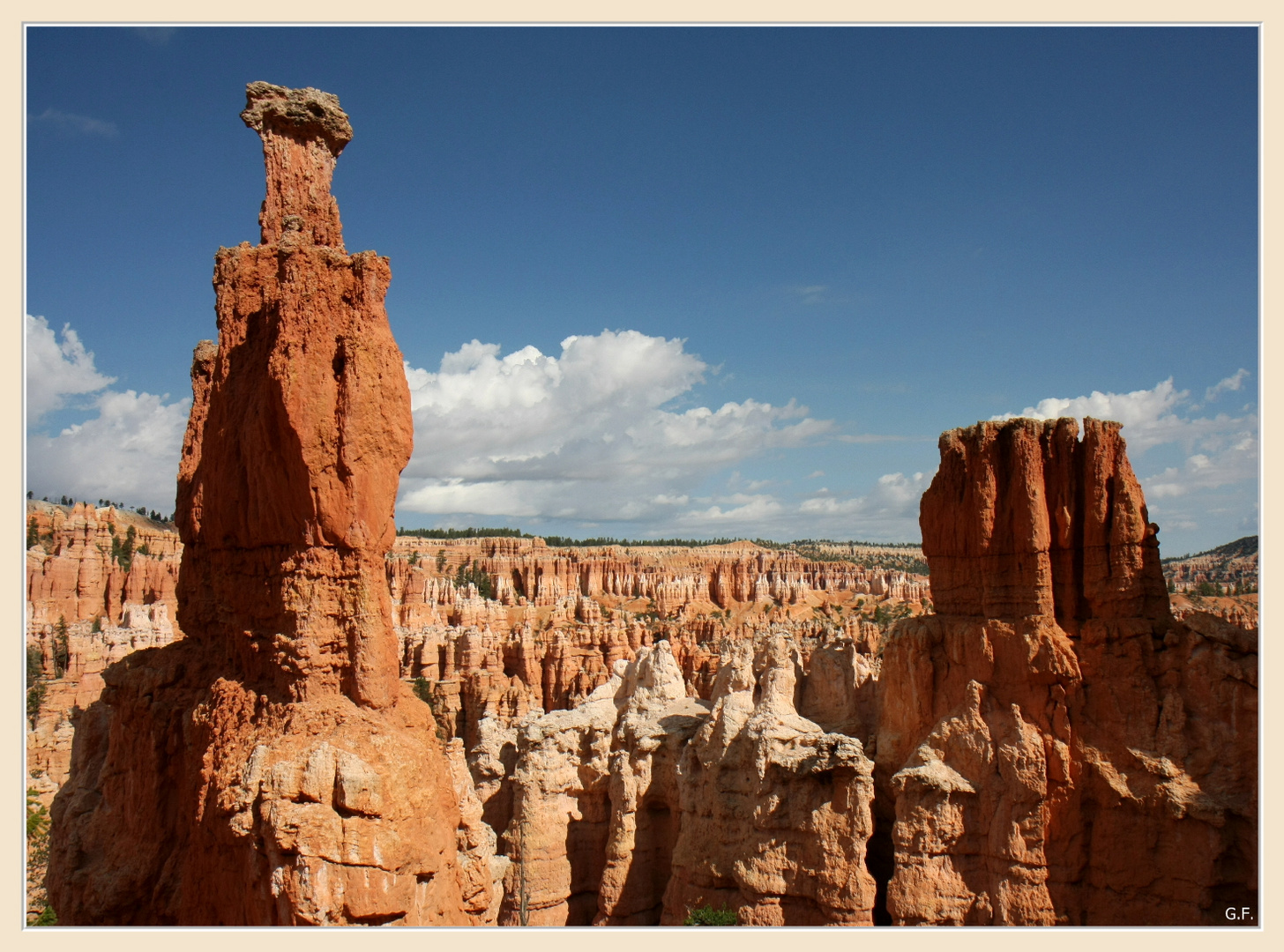 Bryce Canyon NP VII
