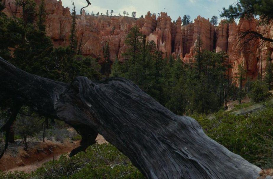 Bryce Canyon schön zum wandern