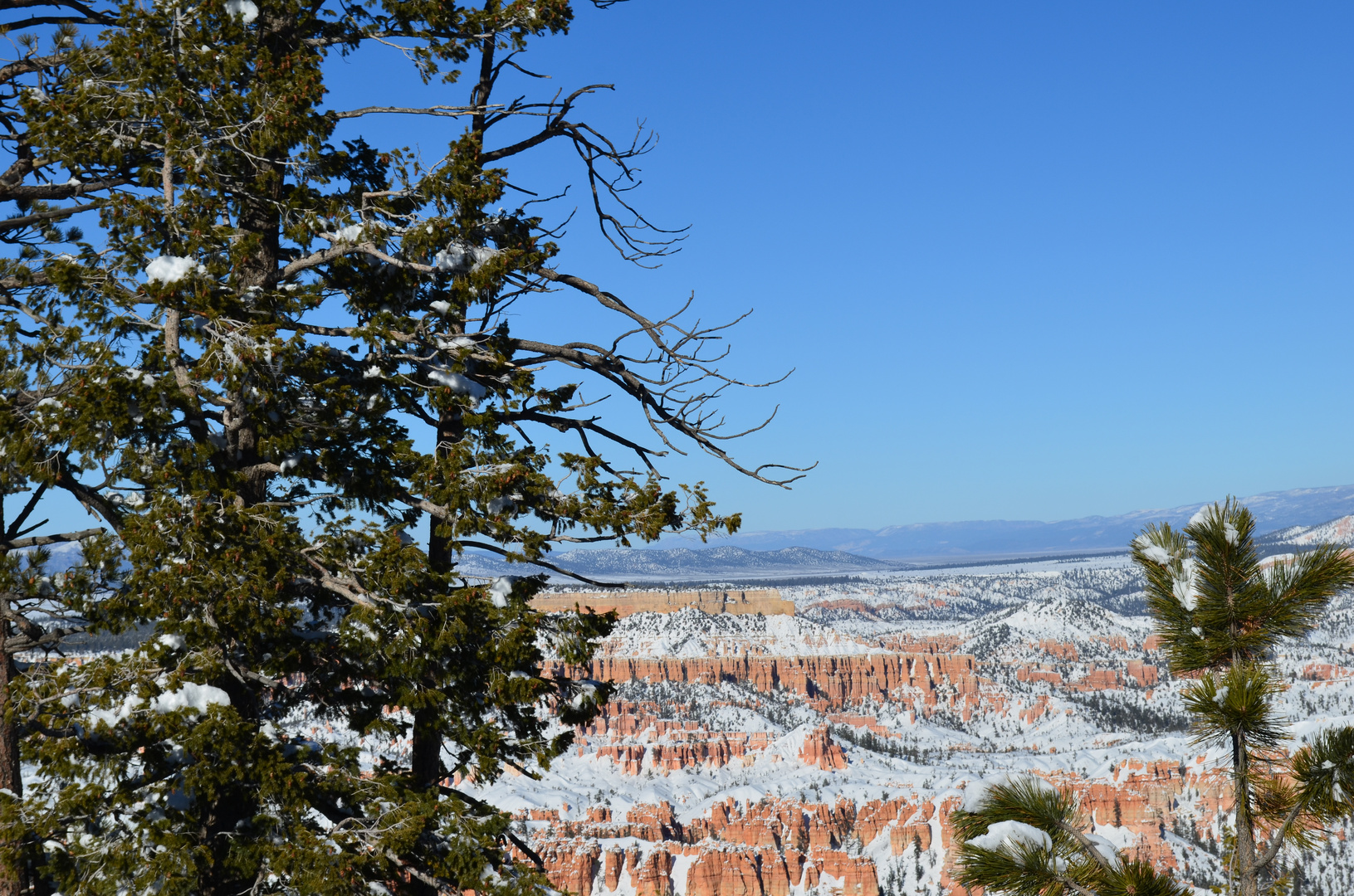 Bryce Canyon (USA)