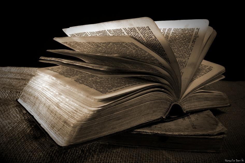 Buch der Bücher