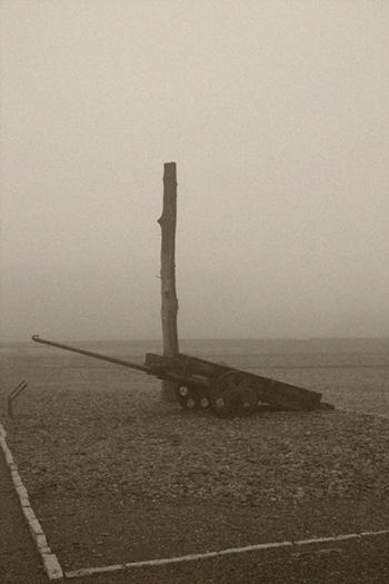 Buchenwald 01