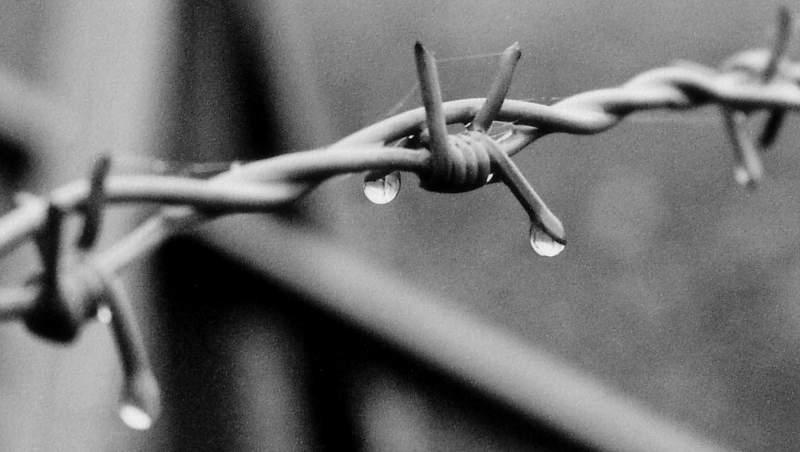 Buchenwald VII