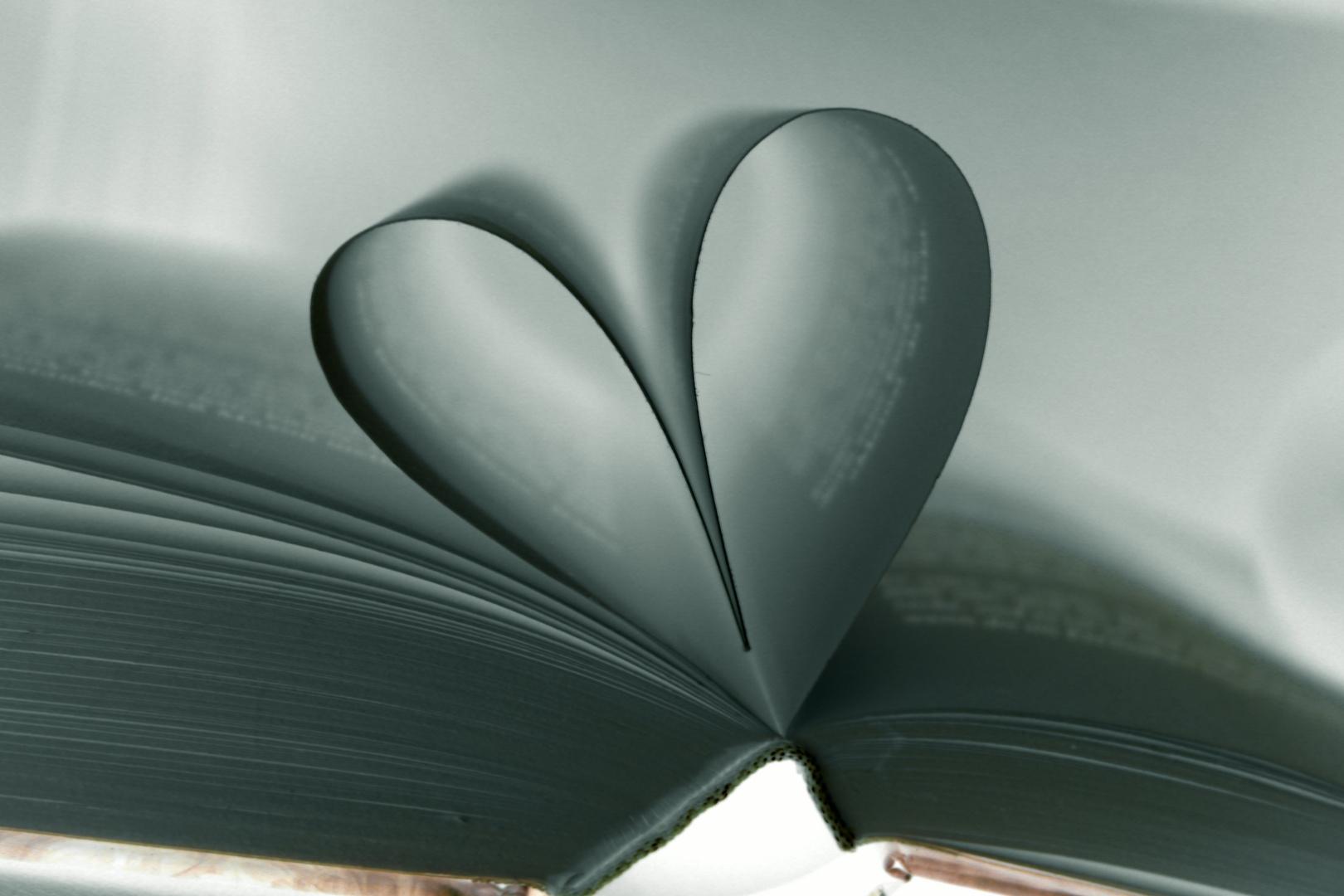 Buchherz fotografiert mit den Smart Filter Negativ / Paper Heart photographed with the SmartFilter n