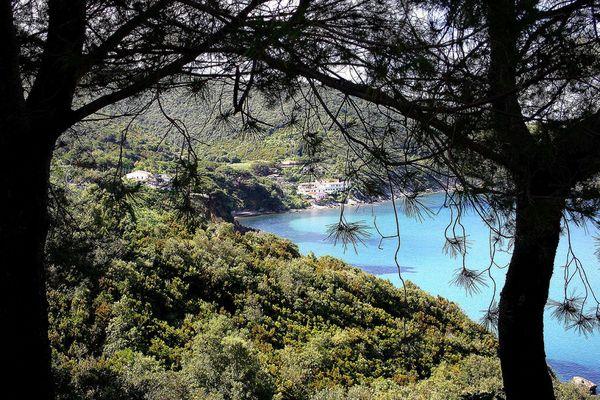 Bucht auf Elba