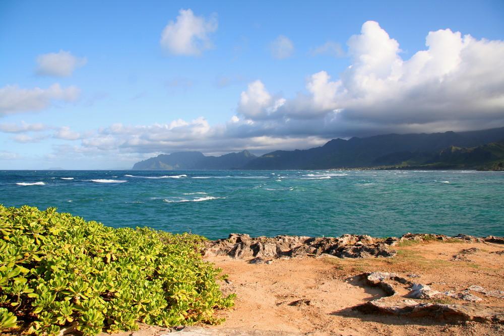 Bucht von La'ie / Oahu-Nordwestküste