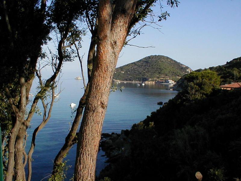 Bucht von Viticcio (Elba)