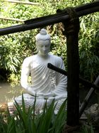 Buddha !
