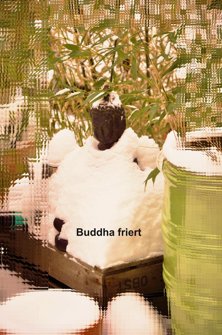 Buddha friert....