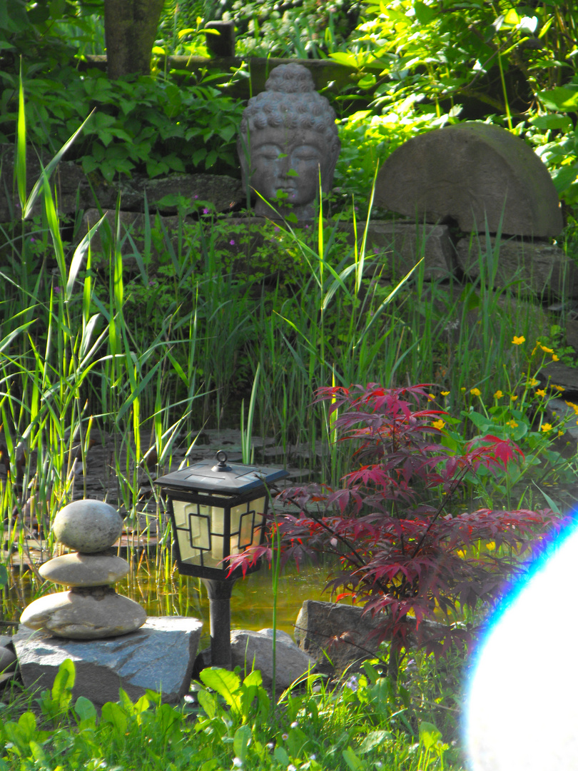 buddha im garten foto bild pflanzen pilze flechten. Black Bedroom Furniture Sets. Home Design Ideas