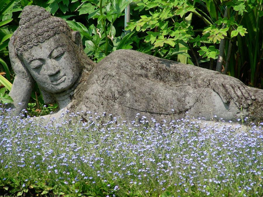 buddha in hellers garten foto bild kunstfotografie kultur gem lde skulpturen. Black Bedroom Furniture Sets. Home Design Ideas