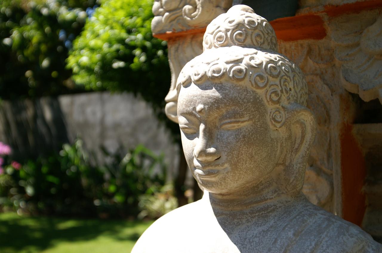 Buddha weiß bescheid
