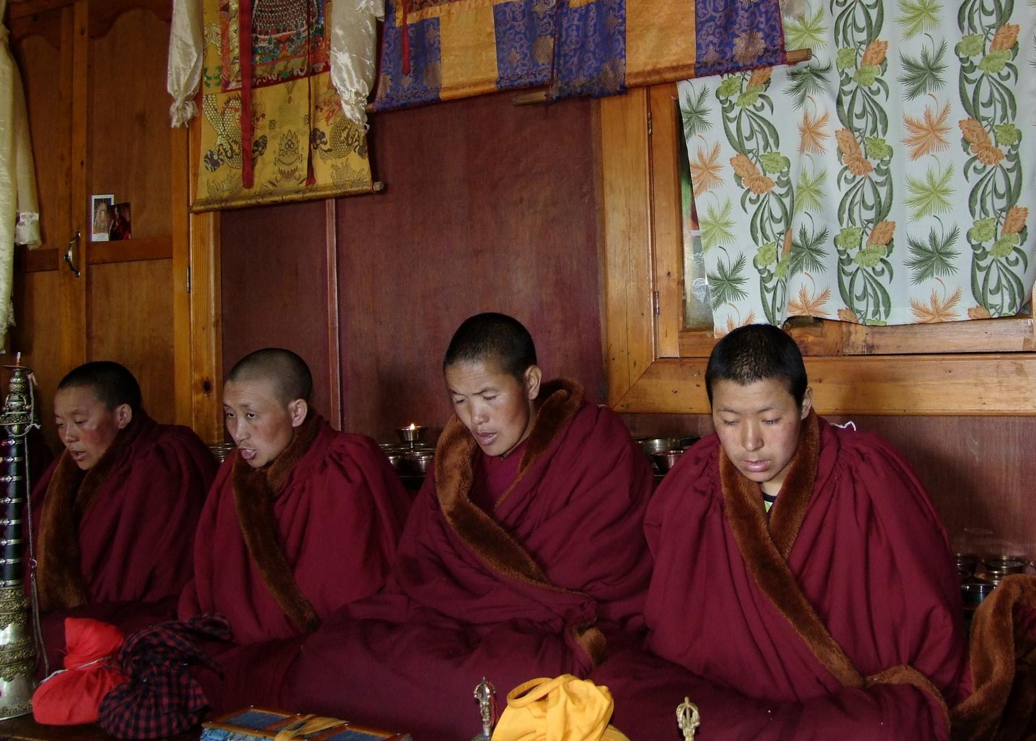 Buddhistische Nonnen im Kloster Thamo