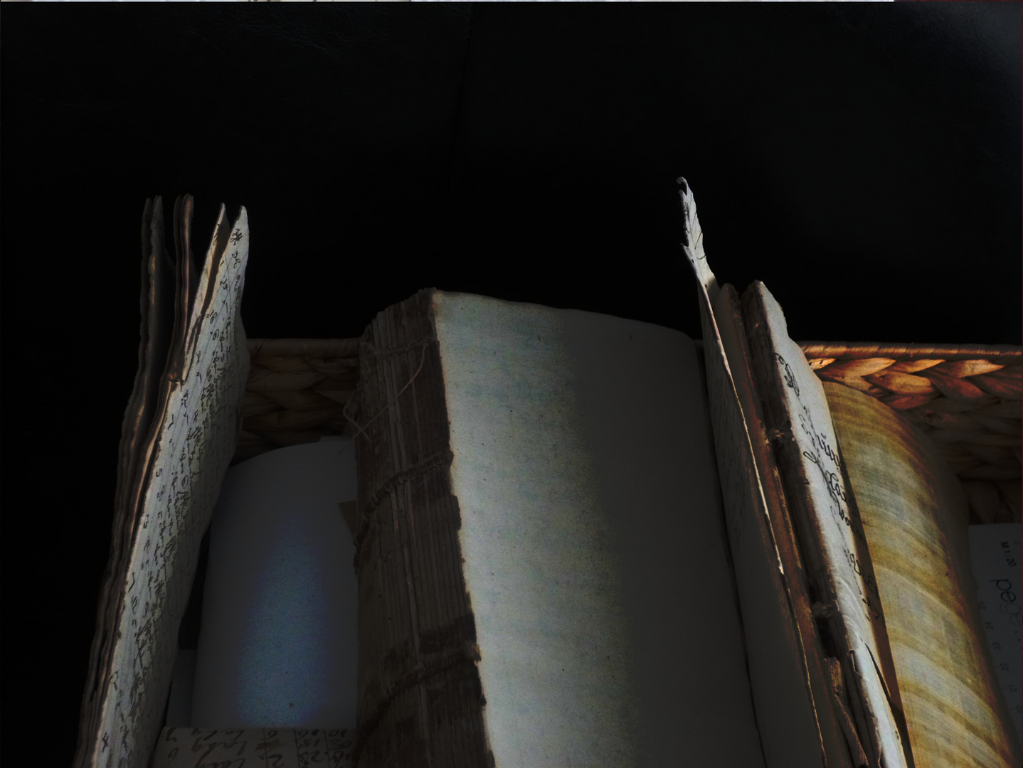 Bücher im Korb