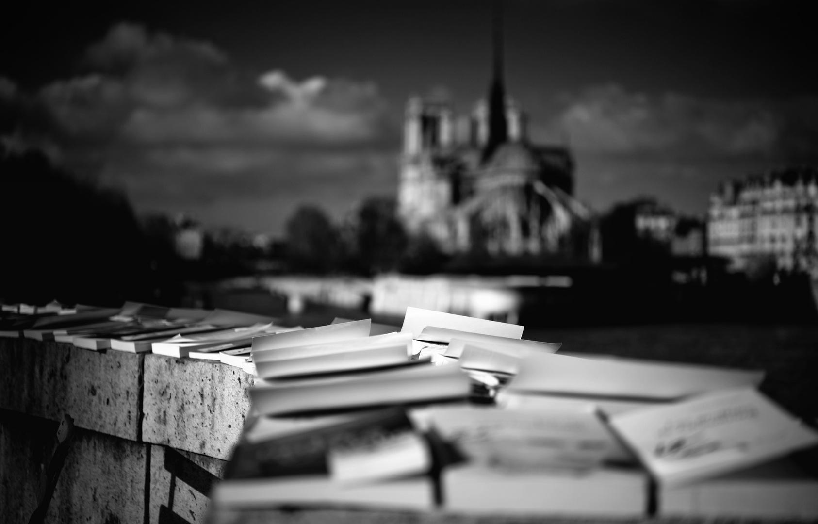 Bücher in Paris