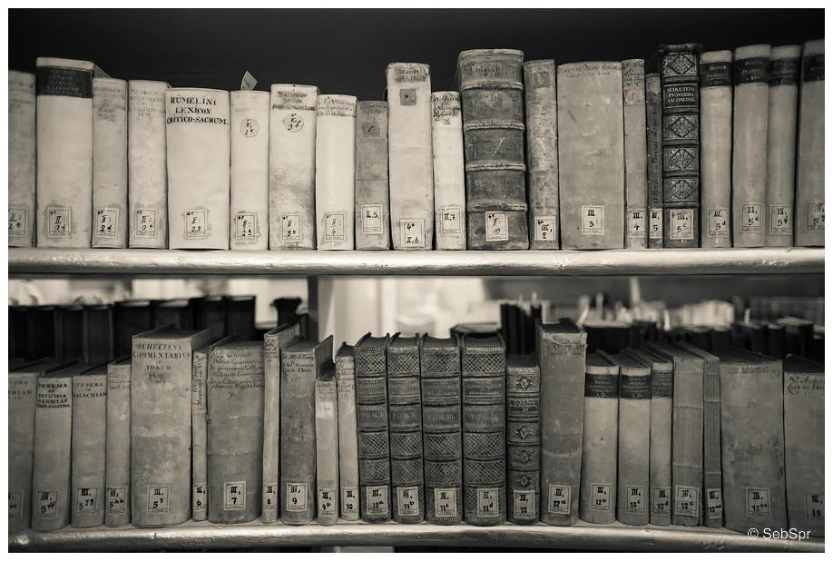 | Bücher sind Schiffe... |