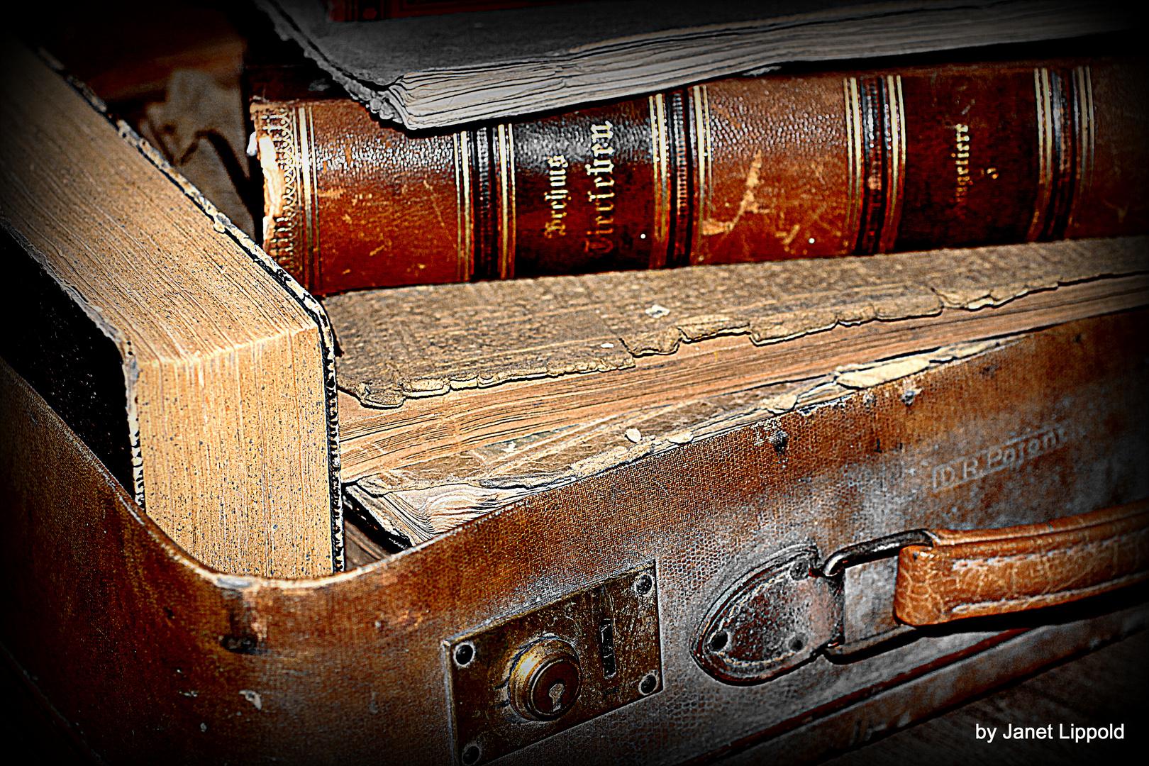 Bücher sind wie eine Reise....