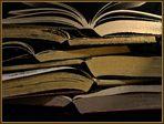 Bücher.Gold.