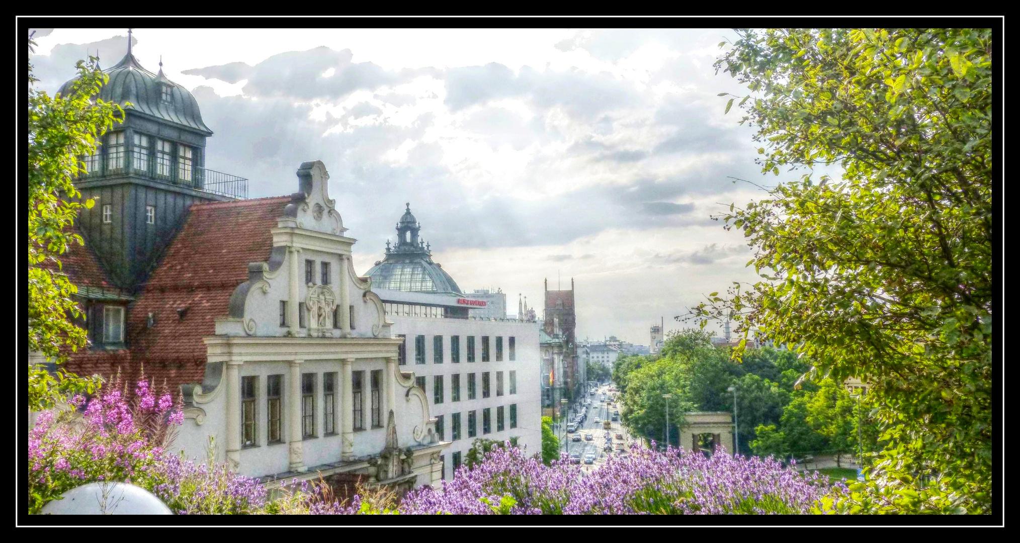 buena vista (2) - München - Lenbachplatz