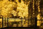 Bürgerpark Braunschweig