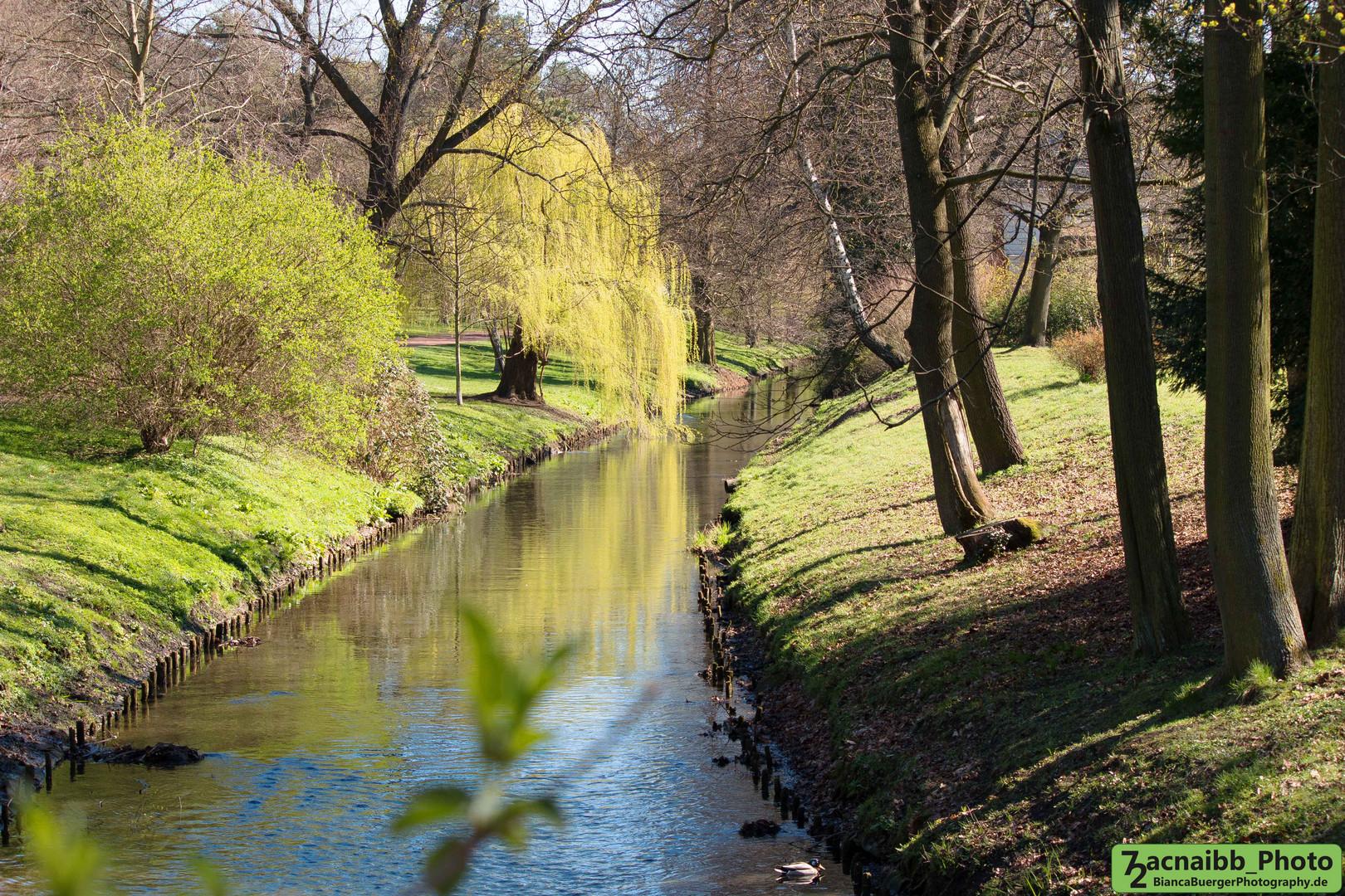 Bürgerpark in Berlin-Pankow