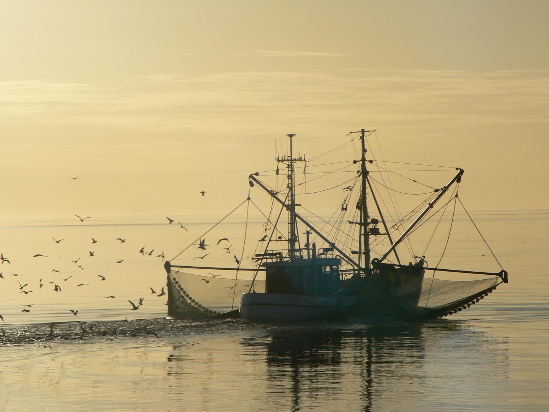 Büsum Nordsee ,, Kudder Träume ''