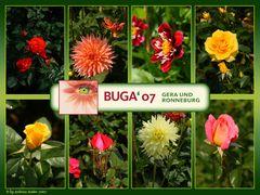 BUGA'07 (3)