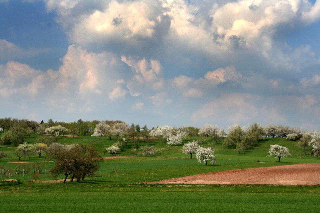 Buhlbronn Felder und Wolken