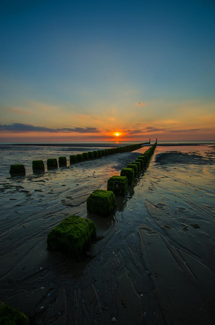 ....Buhne am Strand von Renesse....