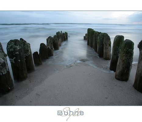 Buhne am Weststrand