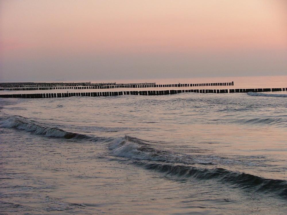 Buhnen am Strand von Graal-Müritz