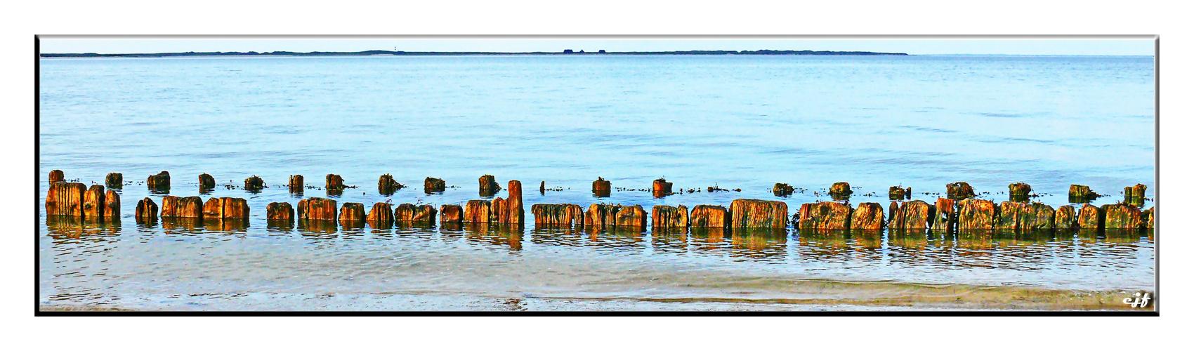 Buhnenreste im Wattenmeer