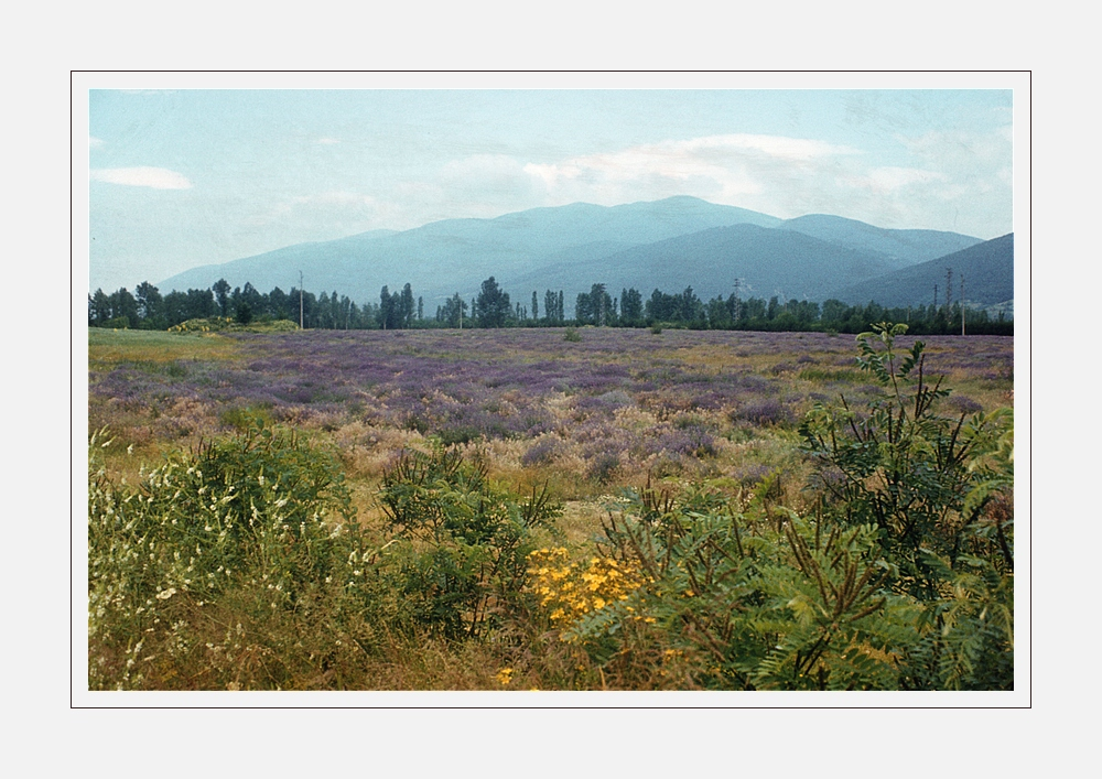 Bulgarische Landschaft