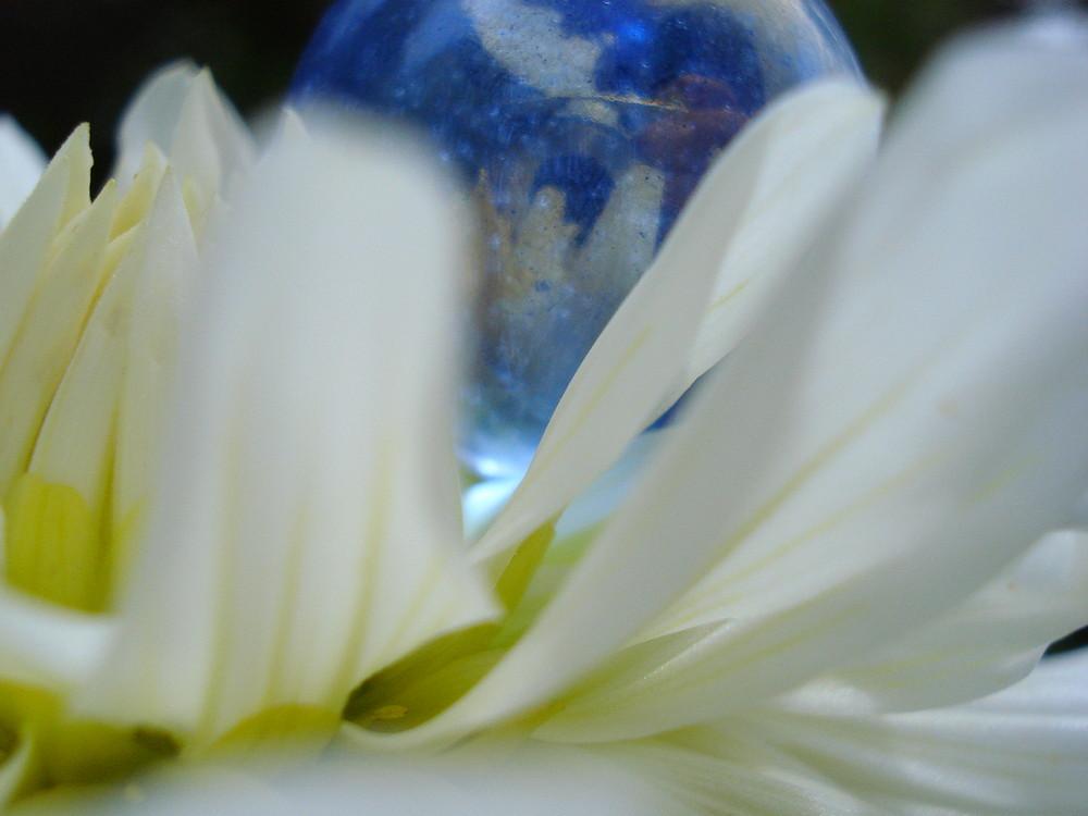 bulle rêveuse
