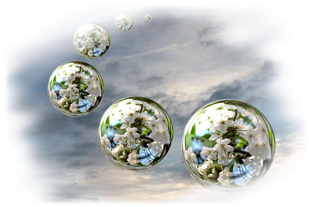 bulles de fleurs