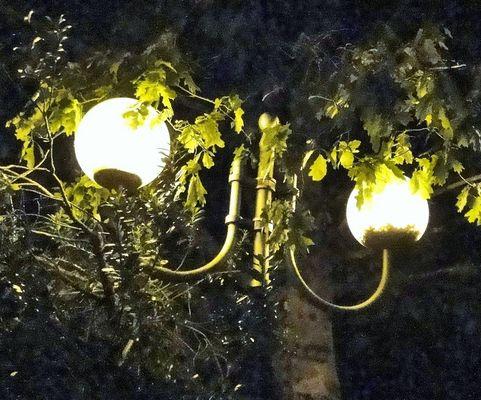 Bulles de lumière....