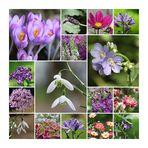 Bumen und Blüten