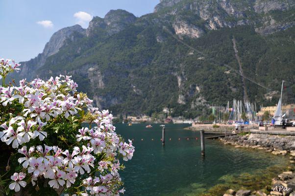 Bummel in Riva (1)