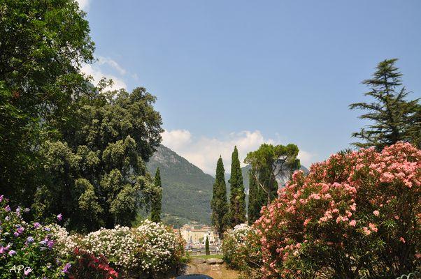 Bummel in Riva (3)