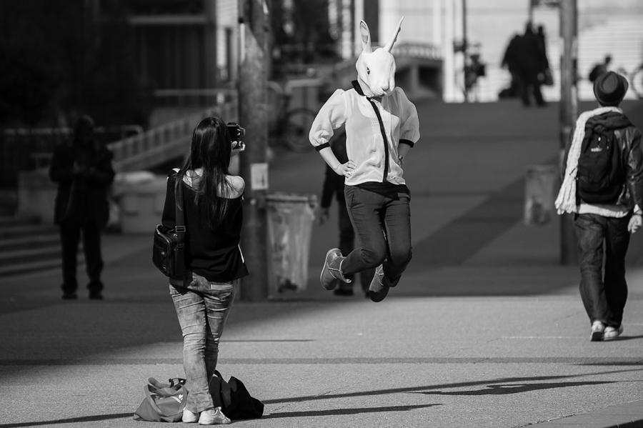 Bunny shooting