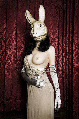 bunny-tales