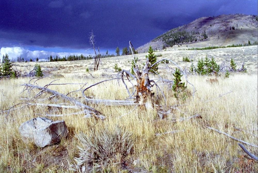 Bunsen Peak - Yellowstone Park