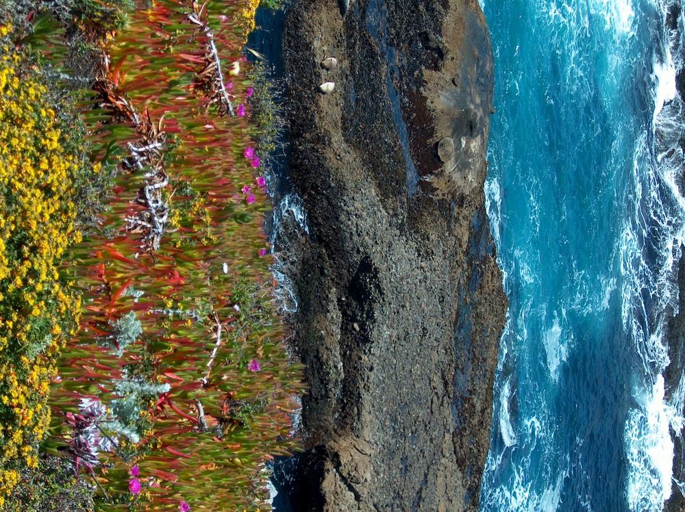 Bunte Farben am Meer
