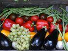 Bunte Gemüsekiste