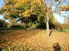 Bunte Herbstarben