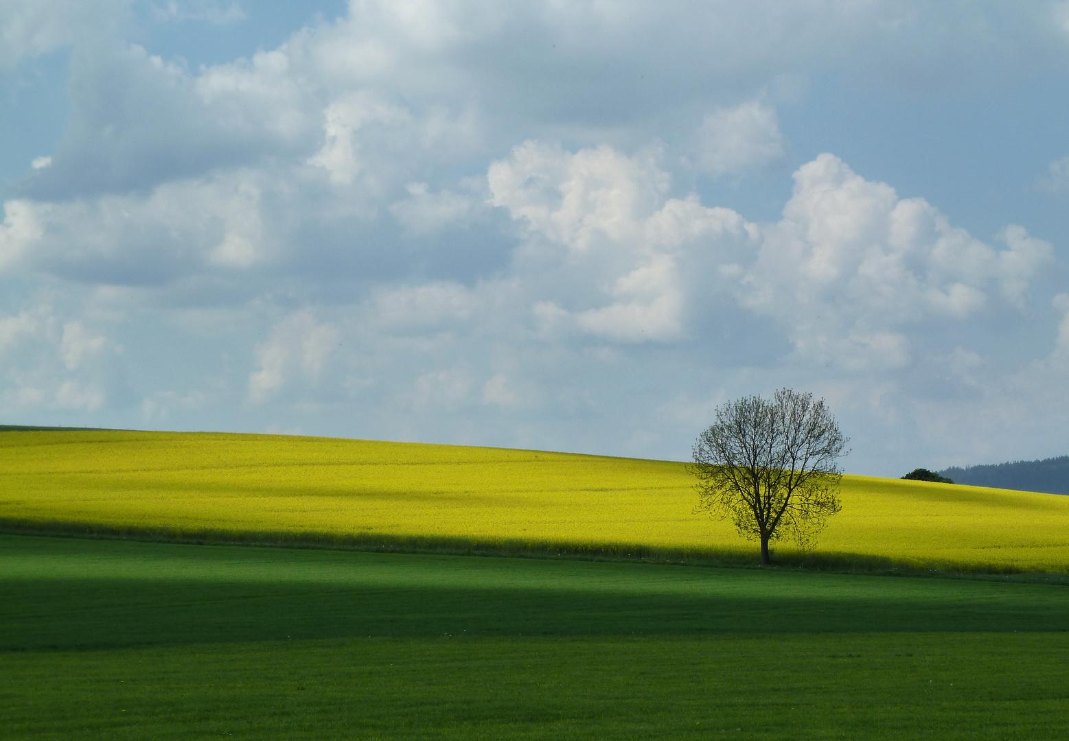 Bunte Landschaft