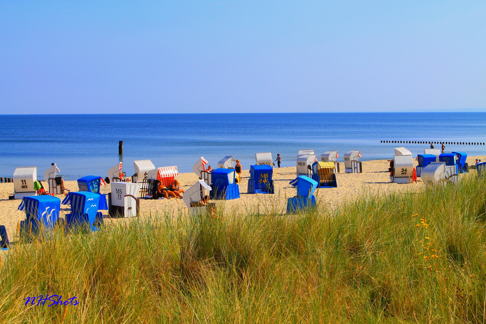 Bunte Tupfen am Strand!