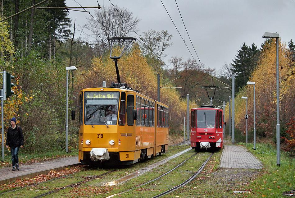 bunte Waldbahn
