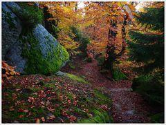 Bunter Herbst am Waldstein