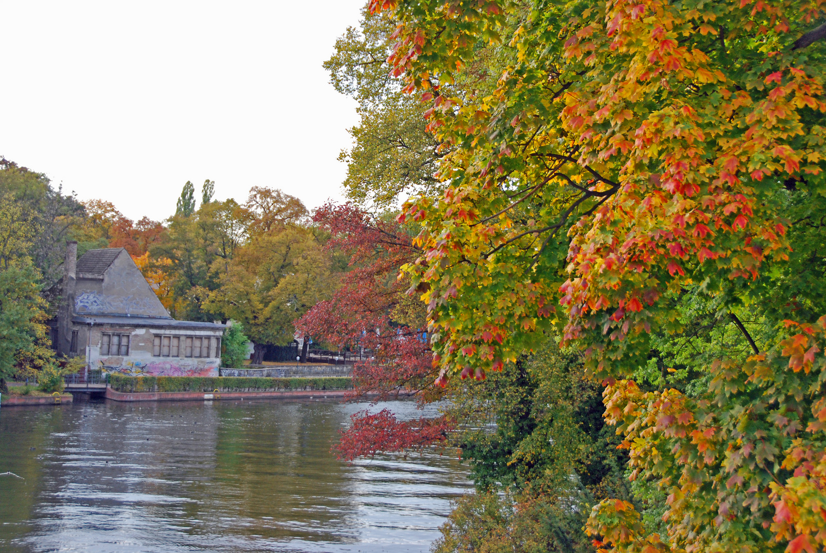 bunter Herbst an der Spree