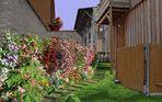 buntes Blumenpotpourri
